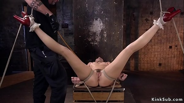 Hairy pussy beauty in hogtie gets caned