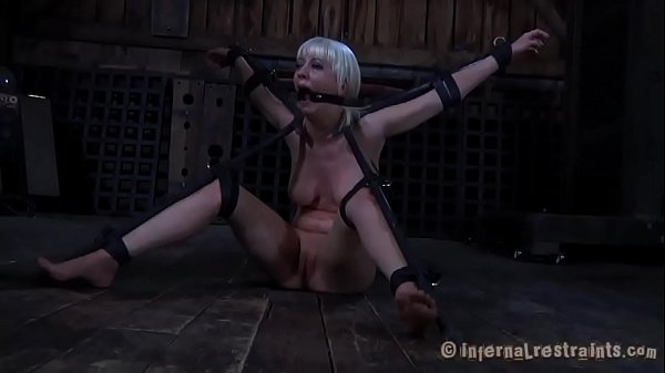 Free Porn  Free Hd Sex Video 2021