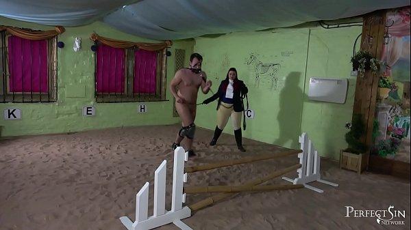 Equestrian Basics - British Discipline and Pony Dressage