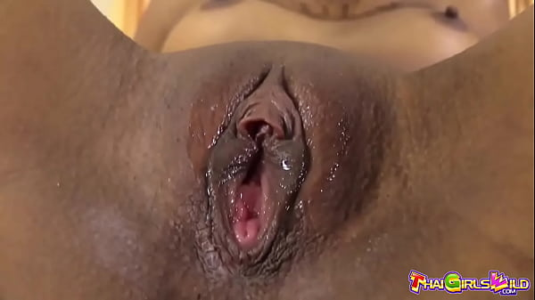 Thai Teenager With Pigtails Creampie