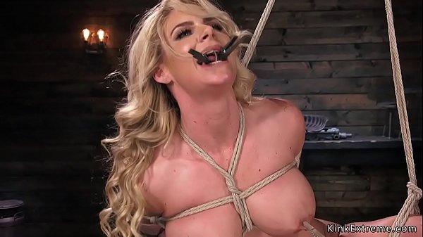 Busty blonde fingered in hogtie