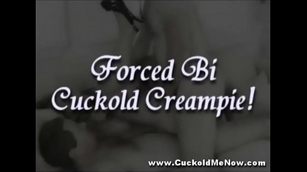 CuckoldFantasiesVol13