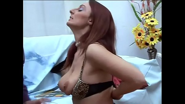 Mature women hunting for young cocks Vol. 17