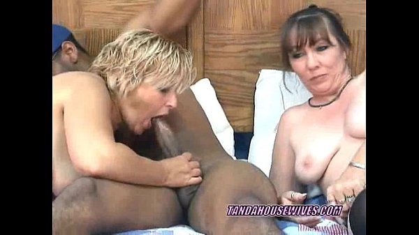 Swinging Liisa swaps a cock with busty Brooke