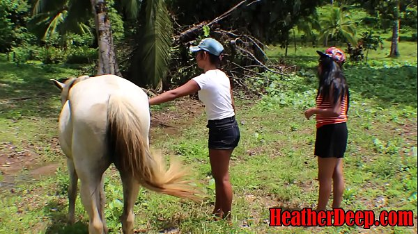 HEATHERDEEP.COM TEEN Girls vs Horse size cock Thumb