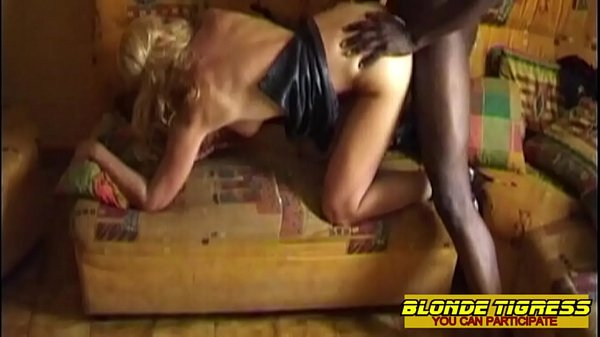 3 amateur milfs searching hot cocks