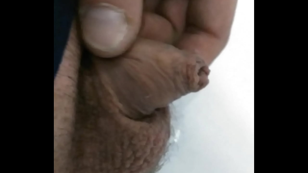 Worlds Smallest Dick Porn