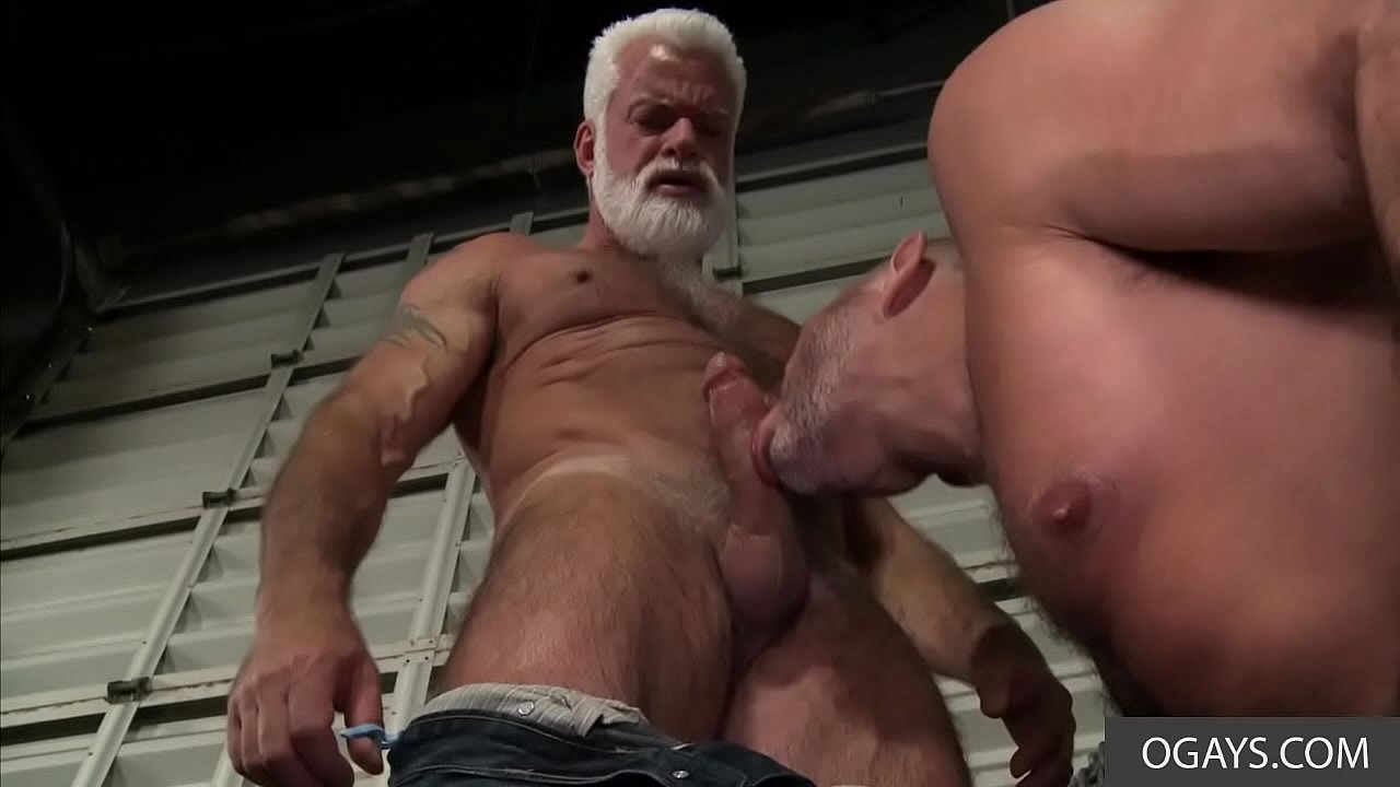 Bareback Gay Maduros old gay stallion teaches young stud a thing or two - clay