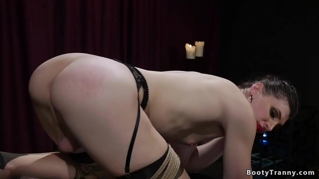 Tranny bdsm Shemale BDSM