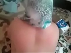 Full Video http:\/\/yamechanic.com\/1ZuA