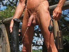 Outdoor Stallion Penis Ass Fuck and Horse Cock ...