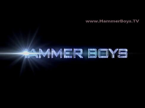 Falcon trio from Hammerboys TV