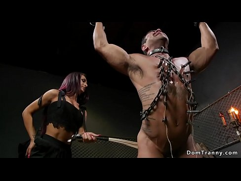 Chained man anal fucked by shemale